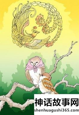 凤凰和麻雀的故事