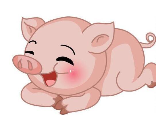十二生肖猪的故事