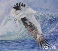上古传说:鲲鹏之变中鲲鹏是什么动物及它的故事