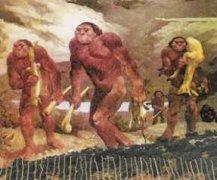 关于原始社会分几个时期